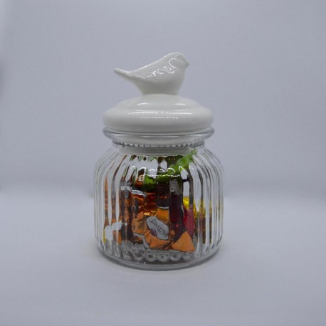 Barattolo in vetro con uccellino